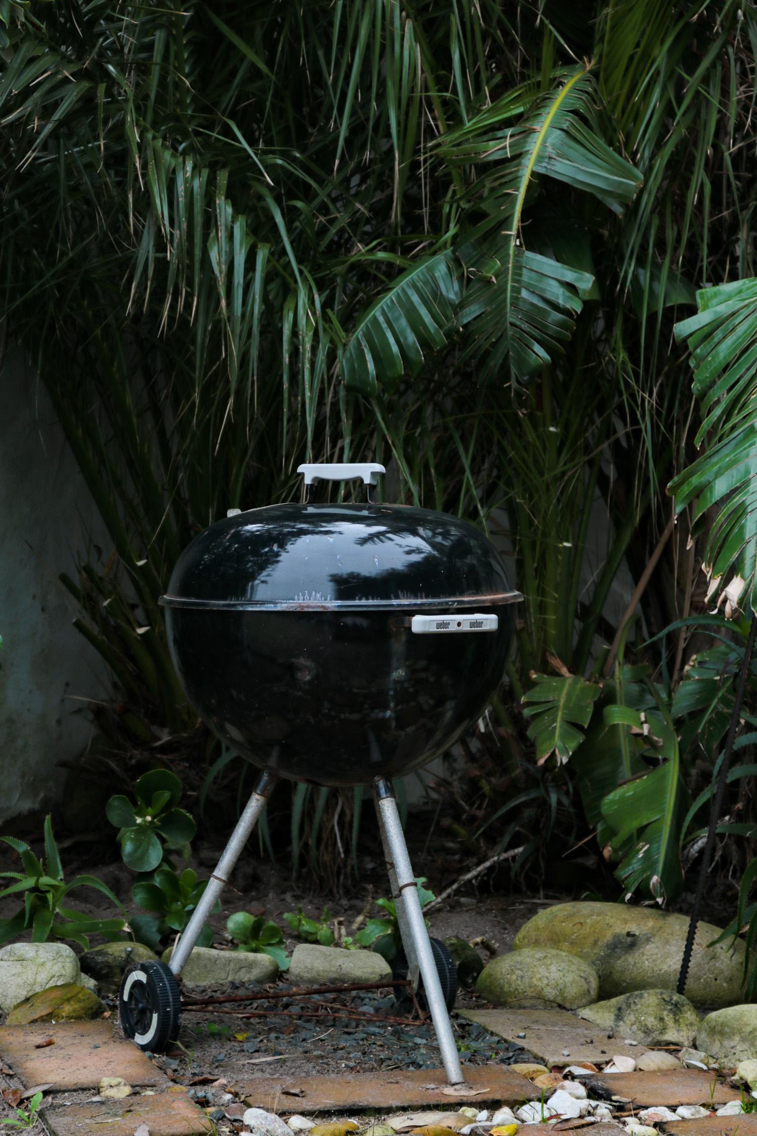 Barbecue / Braai in garden